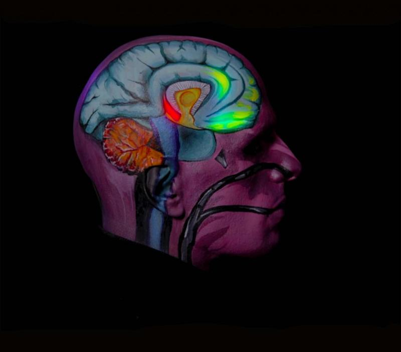 Still from Adam, an example of the PET scans of various spheres of the brain which is ignited or dulled by the illness.