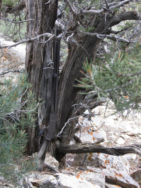 """FILE - This image provided by the Great Basin National Park shows a Winchester Model 1873 rifle found in Nevada. The gun made in 1882 was found propped against a juniper tree in Great Basin National Park in November during an archaeological survey. rifle discovered five years ago leaning against a juniper tree at Great Basin National Park has a new home in an exhibit dedicated to the """"Forgotten Winchester"""" at the park visitor center near the Nevada-Utah line. (National Park Service via AP, File)"""