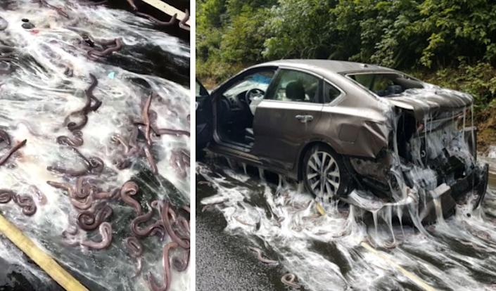 A slimy crash closed Highway 101 in Oregon. (Photo: Depoe Bay Fire District/Oregon State Police)