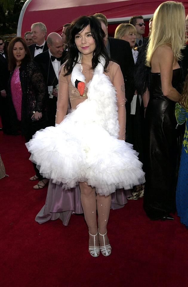 "Bjork's swan dress (2001): Being notoriously daring and different as she is, Bjork dazzled and bedeviled everyone when she showed up at the planet's most-watched red carpet in a white, fluffy gown with a swan's head draped around her neck. (The Icelandic singer and actress was nominated for best original song for ""I've Seen It All"" from Lars von Trier's ""Dancer in the Dark."") It is arguably the most famous outfit ever worn to the Oscars. It inspired many a Halloween costume."