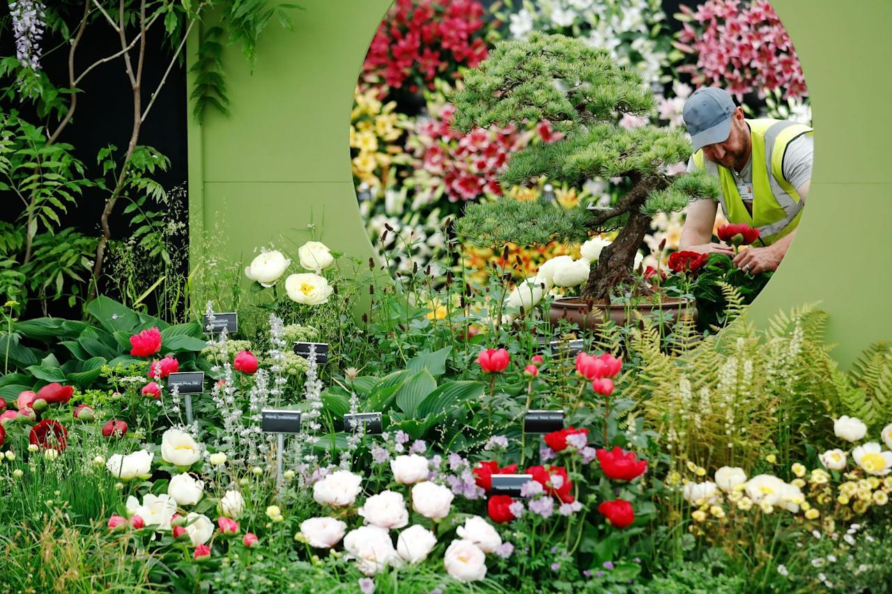 """<p>In <a href=""""https://www.rhs.org.uk/shows-events/rhs-chelsea-flower-show/history"""" target=""""_blank"""">1919</a>, the Government demanded that the RHS pay an Entertainment Tax for the show – but with resources already strained, it threatened Chelsea. However, this was wavered once the RHS convinced the Government that the show had educational benefit.</p>"""