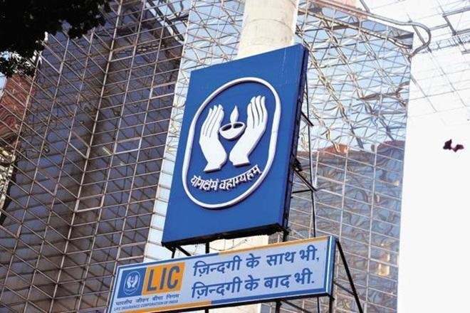 LIC earns over Rs 14,000 crore profit from stock markets so far in current financial year