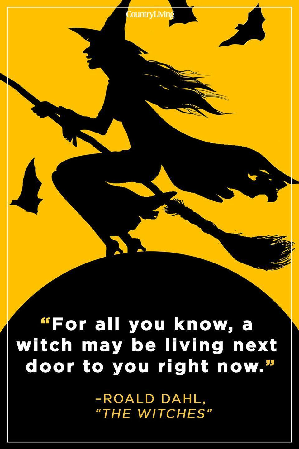 """<p>""""For all you know, a witch may be living next door to you right now.""""</p>"""