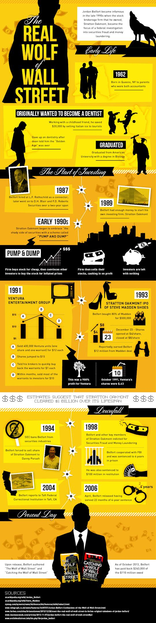 The Real Wolf of Wall Street image the real wolf on wall street infographic4