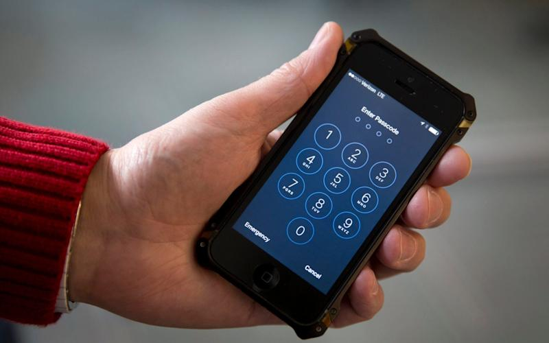 Secret iPhone code posted on-line is 'largest leak in historical past'