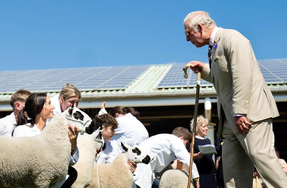 The Prince of Wales during a visit to the Great Yorkshire Show (Danny Lawson/PA) (PA Wire)