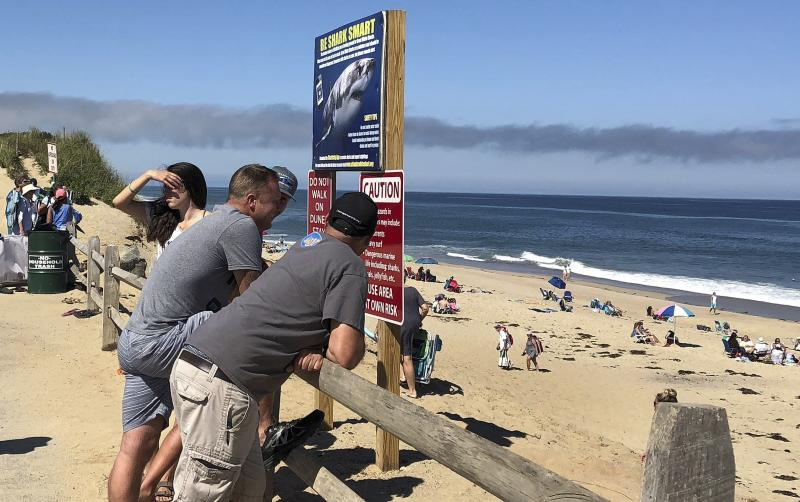 FILE - In this Sept. 15, 2018 file photo, people look out at the shore after a shark attack at Newcomb Hollow Beach in Wellfleet, Mass., where a 26-year-old was attacked and later died at a hospital. Local chamber of commerce data suggests Cape Cod lodging and beach visit numbers are down in summer 2019, after uncommon tornados hit just one year after a pair of shark attacks. (AP Photo/Susan Haigh, File)