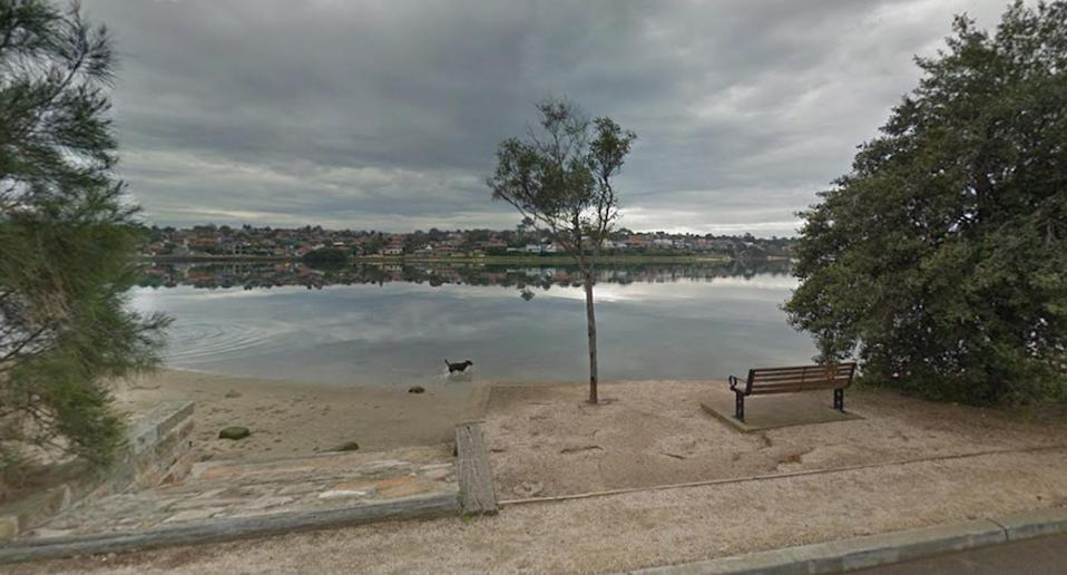 The shark was spotted near the popular dog spot. Source: Google Maps