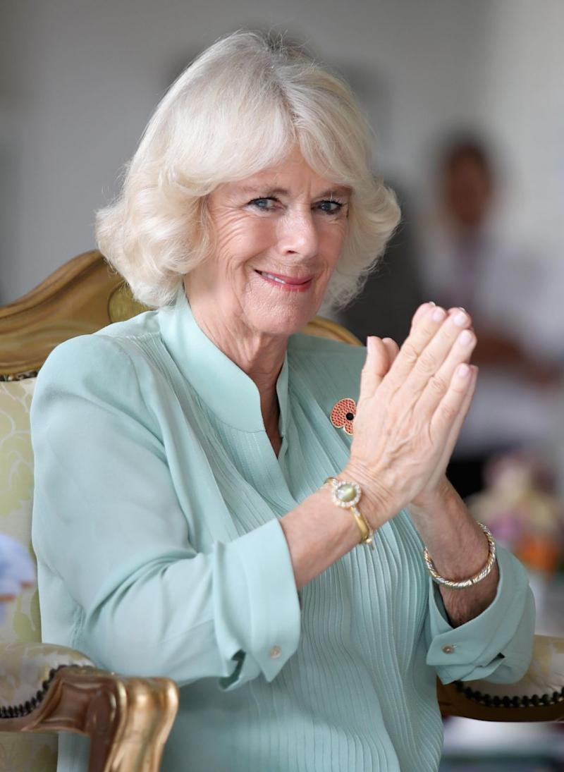 Camilla is reportedly writing an explosive tell-all book about life in the palace. Photo: Getty Images