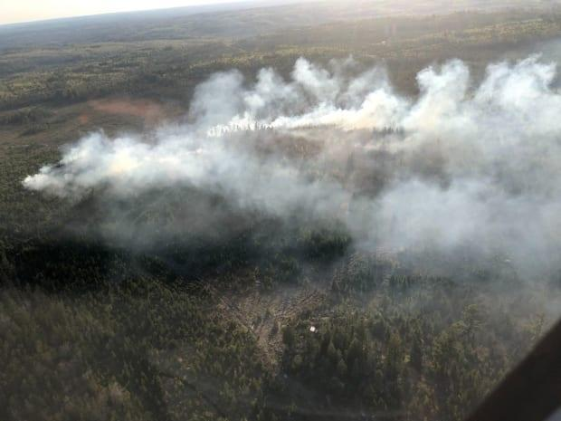 A forest fire near Falmouth, N.S., measures about two hectares, but is not expected to spread. (Department of Lands and Forestry  - image credit)