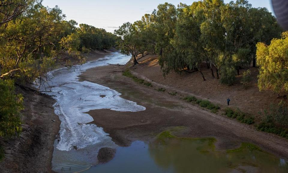The Darling River at Louth. Increased flood plain harvesting, along with climate change, has been blamed for providing less water to the Murray.