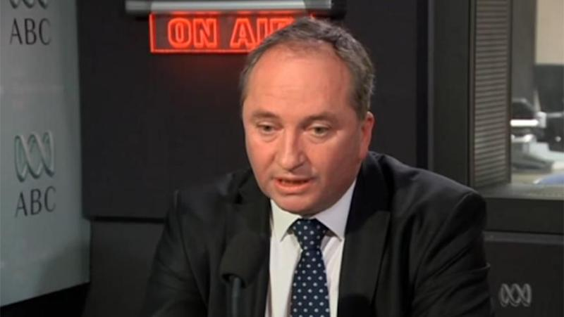 Minister for Agriculture and Deputy PM Barnaby Joyce. Photo: ABC