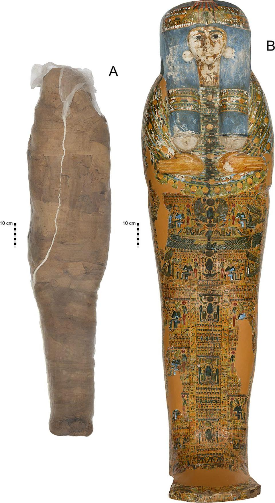 Mummified individual and coffin in the Nicholson Collection of the Chau Chak Wing Museum