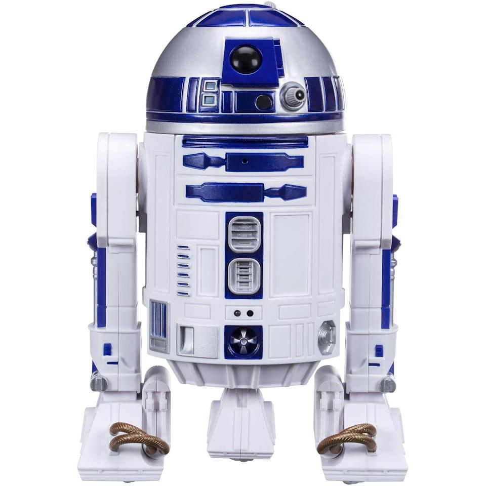 <p>The Star Wars Smart R2-D ($100) will be so much fun to play with and it's app driven.</p>