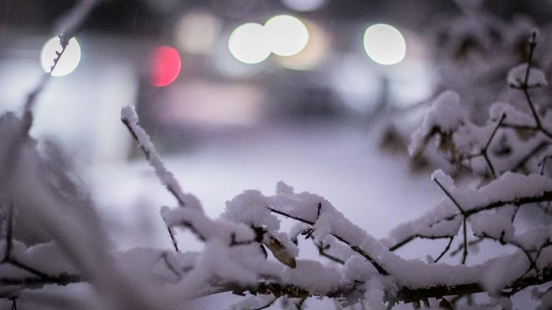 Vancouver pulling in extra crews with snow on the way for B.C.'s South Coast