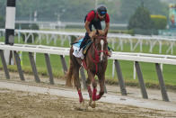 France Go De Ina trains the day before the 153rd running of the Belmont Stakes horse race in Elmont, N.Y., Friday, June 4, 2021. (AP Photo/Seth Wenig)