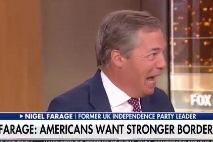 Controversial comments: Nigel Farage (Fox News)