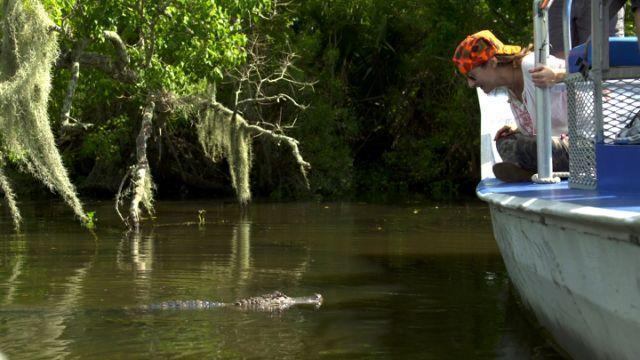 WATCH: The Hunt for the Louisiana Swamp Monsters