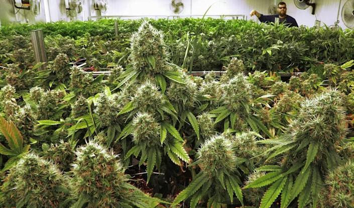 "Source: <a href=""http://ap.org"" class=""link rapid-noclick-resp"" rel=""nofollow noopener"" target=""_blank"" data-ylk=""slk:Seth Perlman/AP"">Seth Perlman/AP</a>"