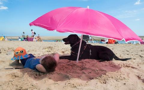 Eddie Botha, three, and Henry the black labrador, on the beach at Wells-next-the-Sea in Norfolk - Credit: David Rose for The Telegraph