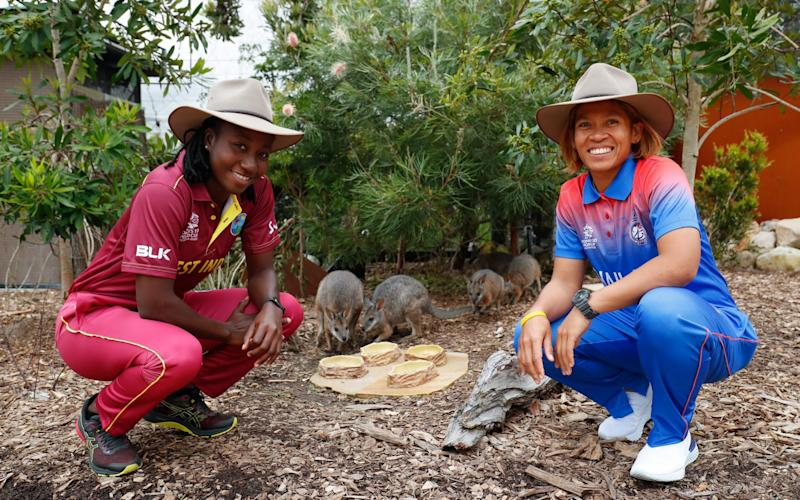 Sornnarin Tippoch of Thailand and Stafanie Taylor of the West Indies pose with Tammar wallabies during the ICC 2020 Women's Twenty20 World Cup Captains media call at Taronga Zoo on February 17, 2020 in Sydney, Australia - Getty Images