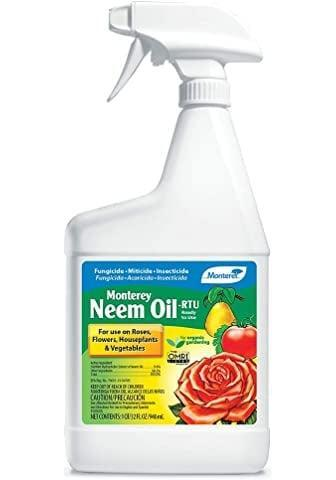 <p>Include a small dose of this <span>Organix South Neem Oil</span> ($27) in your spray bottle to keep bugs away. Be sure to use it conservatively, and only when it's essential as it's a really potent bug repellant that will keep ants, cockroaches and other insects away.</p>