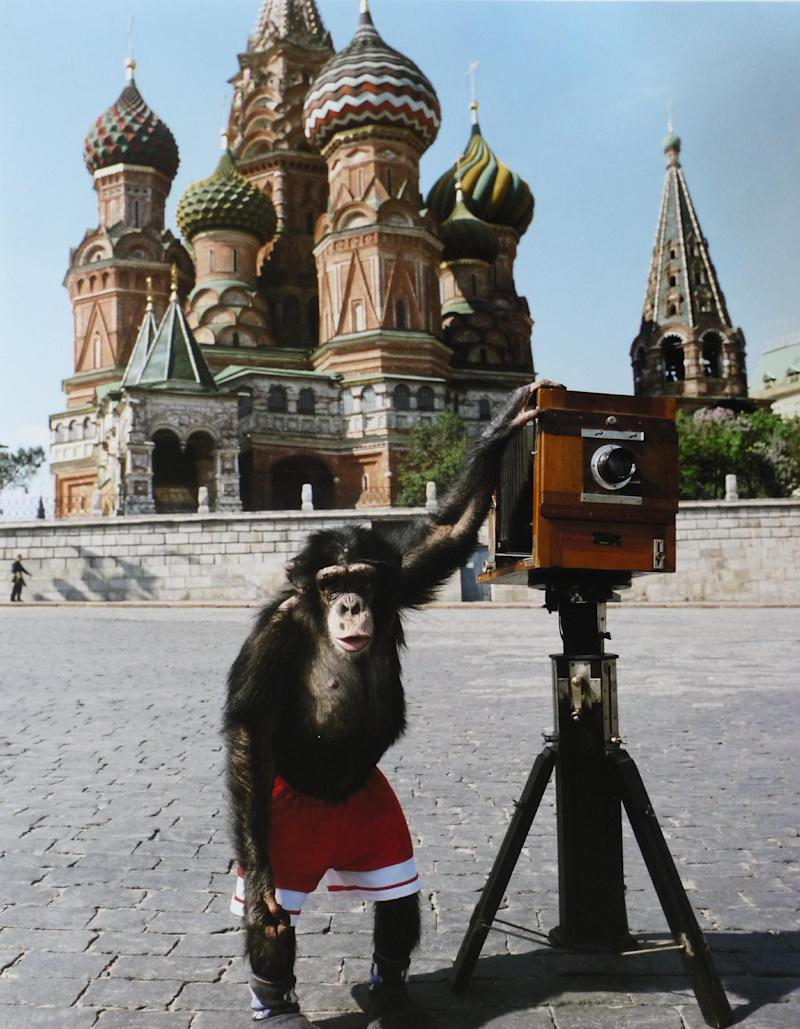 In this image made available Wednesday June 5, 2013  by the auction house Sotherby's shows the chimpanzee Mikki in Red Square Moscow in this undated image. They're askew and out of focus, but a set of photos taken by a talented Russian chimpanzee sold at auction Wednesday June 5, 2013  for 50,000 pounds ($76,680). The blurry images of Moscow's Red Square by simian snapper Mikki were part of a sale of Russian photography at Sotheby's in London. (AP Photo/Sotherby's) NO ARCHIVE ONE TIME USE ONLY Komar and Melamid Our Moscow Through the Eyes of Mikki (Hammer Price with Buyer's Premium) 50,000 GBP