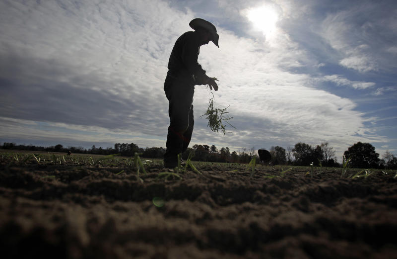 Immigration bill envisions new farm worker program