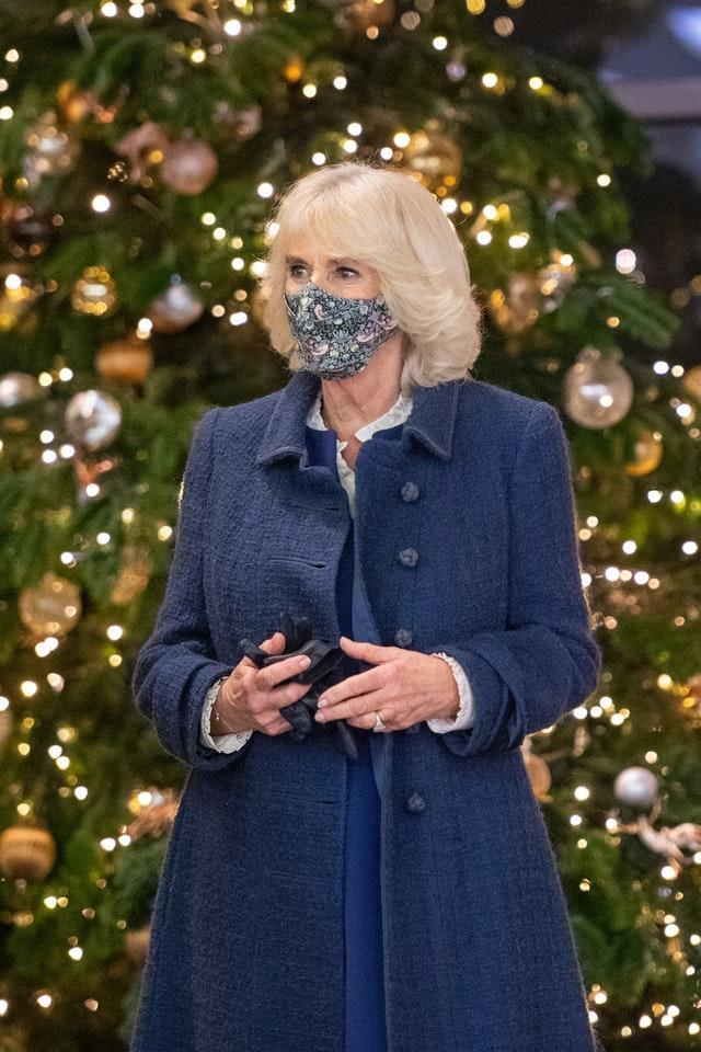 The Duchess of Cornwall during a visit to view the Artemisia and the Titian: Love Desire Death exhibitions