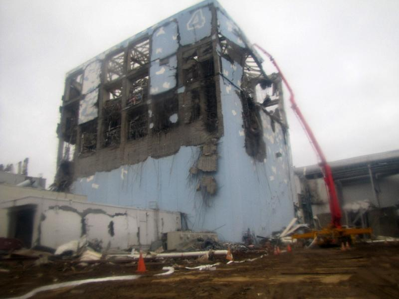 The tsunami-sparked reactor meltdowns at the Fukushima plant set off the worst atomic crisis since Chernobyl in 1986