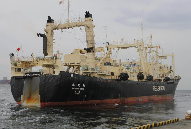 FILE - In this Friday, March 25, 2011 file photo, Japan's whaling ship Nisshin Maru leaves a port in Tokyo, for the water off Miyagi Prefecture. The battle over Japan's controversial whaling program is moving from the high seas to the United Nations' highest court. Australia opens its case Wednesday June 26, 2013 at the International Court of Justice, arguing that Japan's annual hunt in the icy waters around Antarctica is an illegal commercial activity outlawed since 1986 by an International Whaling Commission moratorium. (AP Photo/Itsuo Inuye, File)