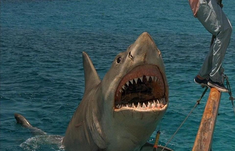 "<p>The first <em>Jaws</em> made people afraid to go in the water, but <em>Jaws 4</em> made people afraid to go to the theater — at least according to the fourth film's abysmal <a href=""https://www.rottentomatoes.com/m/jaws_the_revenge"" rel=""nofollow noopener"" target=""_blank"" data-ylk=""slk:zero percent rating"" class=""link rapid-noclick-resp"">zero percent rating</a> on <em>Rotten Tomatoes</em>. </p>"