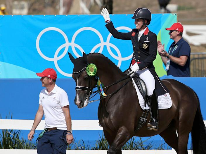 Equestrian horse at the Olympics.