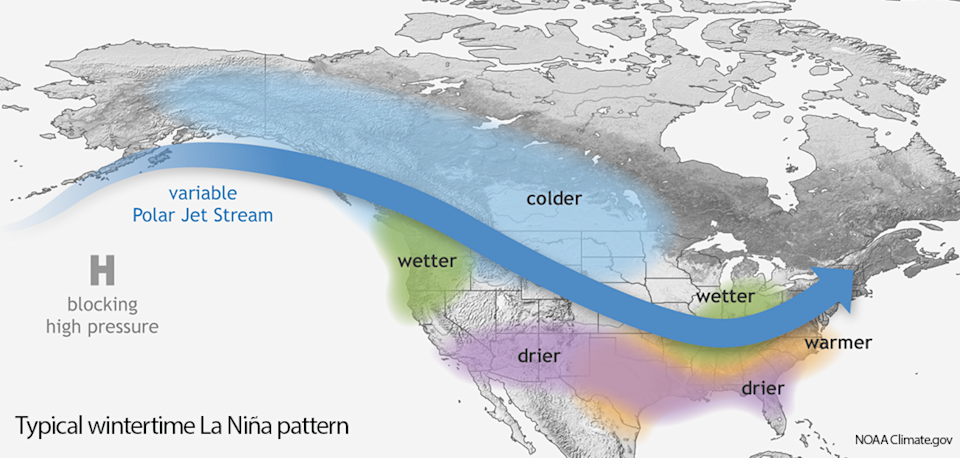 A typical wintertime La Nina pattern across North America. While the Pacific Northwest tends to be wetter-than-average, the southern tier of the U.S. is often unusually dry.