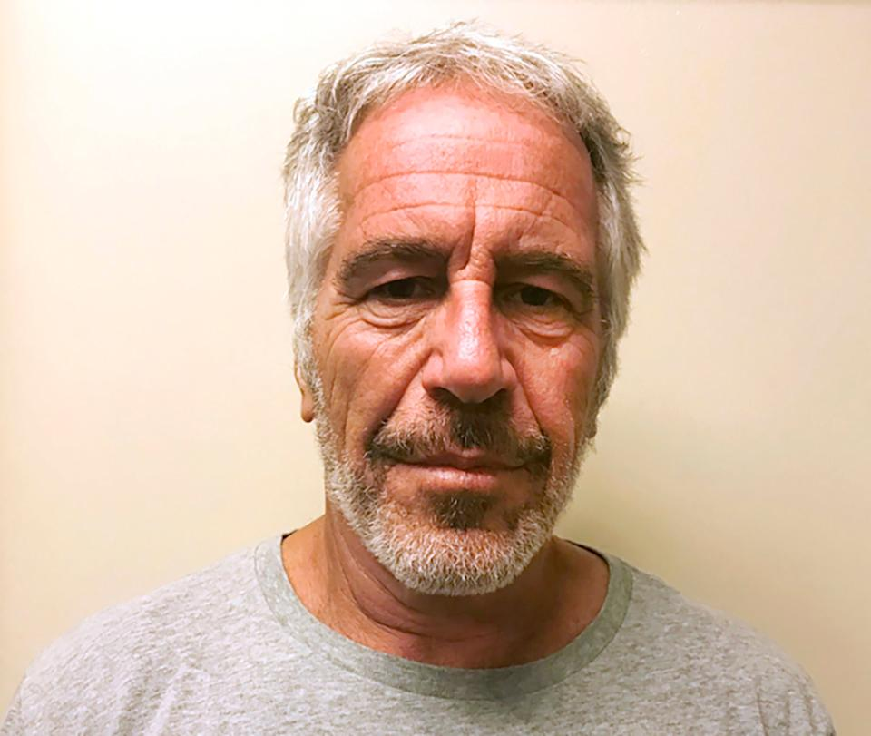 <p>File photo of Jeffrey Epstein provided by the New York State Sex Offender Registry in March 2017</p>AP
