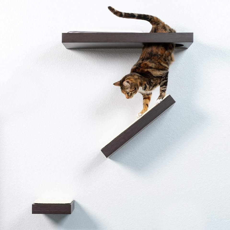 "<p>Let your cat reach new heights, without using the curtains, by adding these pet-friendly wall shelves to your home</p> <p><strong>Buy it!</strong> PetFusion Cat Activity Wall Shelves, $79.95; <a href=""https://www.amazon.com/PetFusion-Activity-Available-Individual-Scratching/dp/B0838KXDBW?ref_=ast_sto_dp"" rel=""nofollow noopener"" target=""_blank"" data-ylk=""slk:Amazon.com"" class=""link rapid-noclick-resp"">Amazon.com</a></p>"