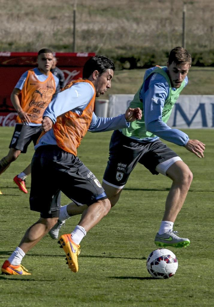 Uruguay's Jorge Fucile (L) and Sebastian Coates take part in a training session of the national team, at the Complejo Celeste training complex near Montevideo, on June 1, 2015, in preparation for the Copa America tournament (AFP Photo/Pablo Bielli)