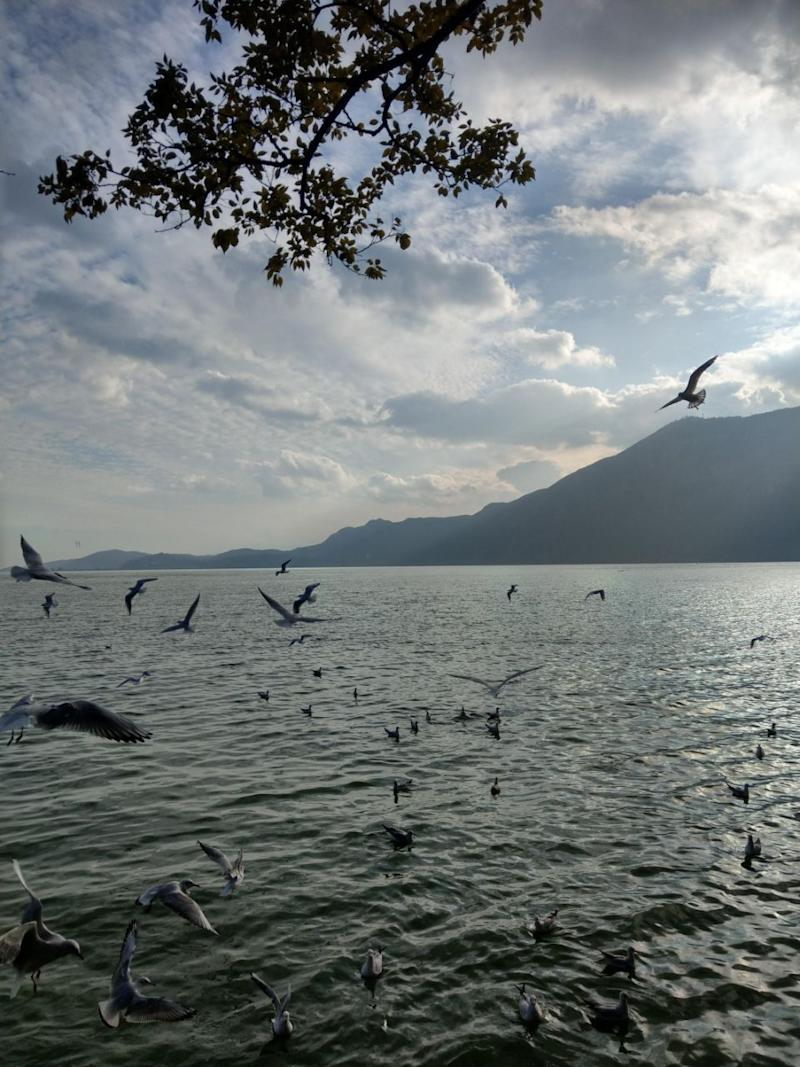John Chen was just taking nice photos of a lake. Photo: Caters News