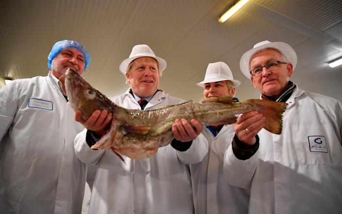 Cod Almighty: Talks have been delayed yet again by dodgy maths in Brussels - Ben Stansall/AFP