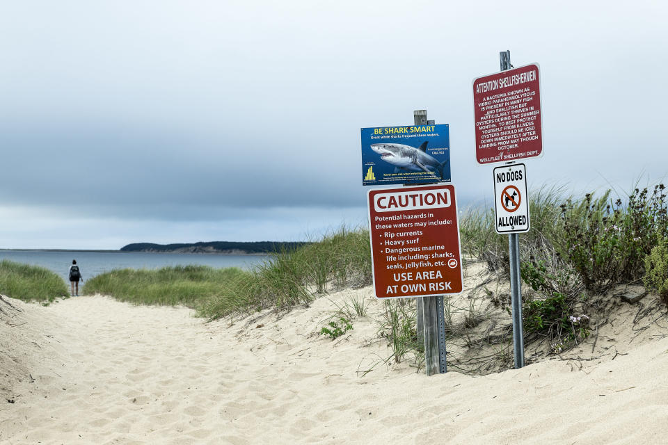 A shark warning and beach advisory. (John Greim/LightRocket via Getty Images)