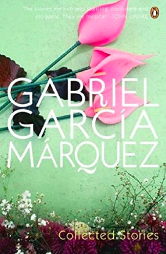 As a lover of short stories and Gabriel Garcia Marquez, I cannot even begin to explain the kind of writing and prose that I read in these stories. This collection of twenty-six stories will transport you to a world that Marquez wants you to see with his words. With incredible themes infused with humour and magical realism, this book gets a 100/10. My favourite story from this collection is: <em>The Incredible and Sad Tale of lnnocent Eréndira and Her Heartless Grandmother</em>.