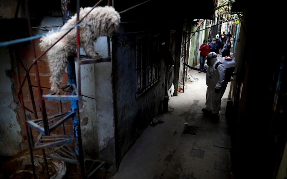 """A dog stands on a staircase where a worker disinfects the streets of the """"Villa 31"""" neighborhood in Buenos Aires - AP"""