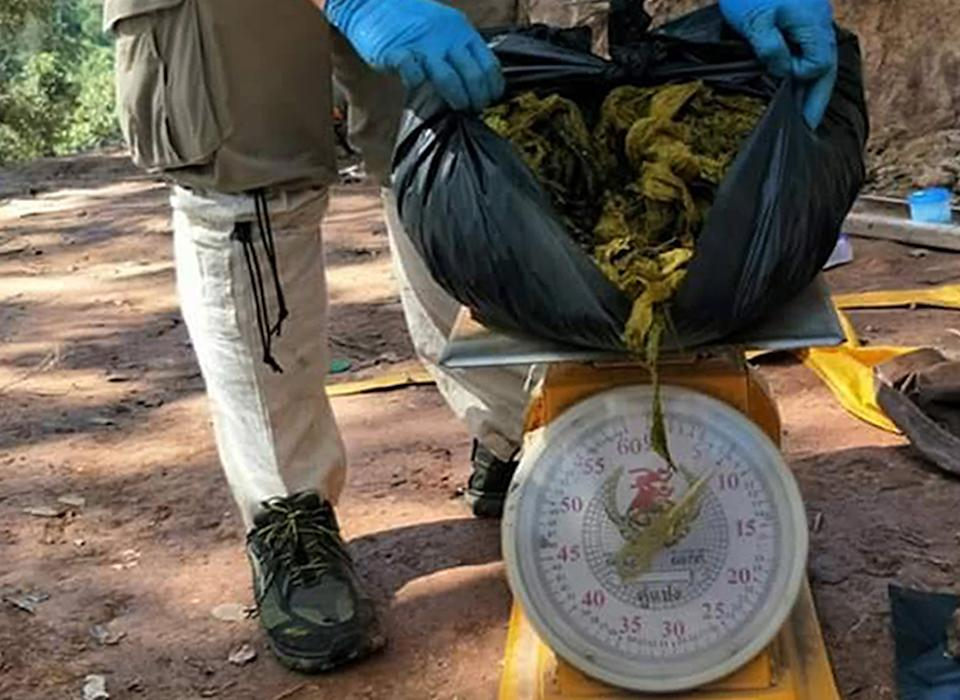 The veterinarians found about seven kilograms of plastic bags and other trash in the stomach of a dead deer after an autopsy, officials said. Source: EPA.