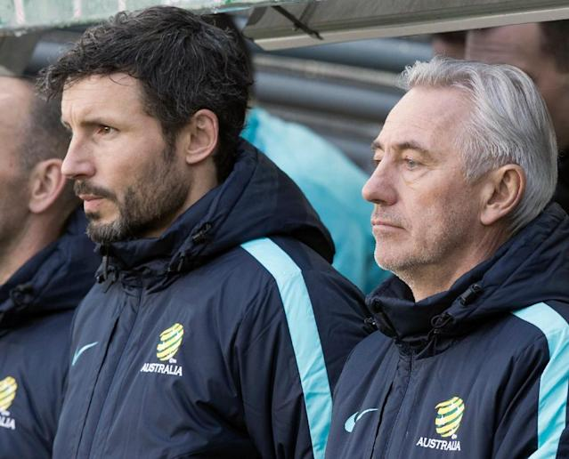Mark van Bommel will switch from assisting Australia head coach Bert van Marwijk to running PSV Eindhoven (AFP Photo/Terje PEDERSEN)