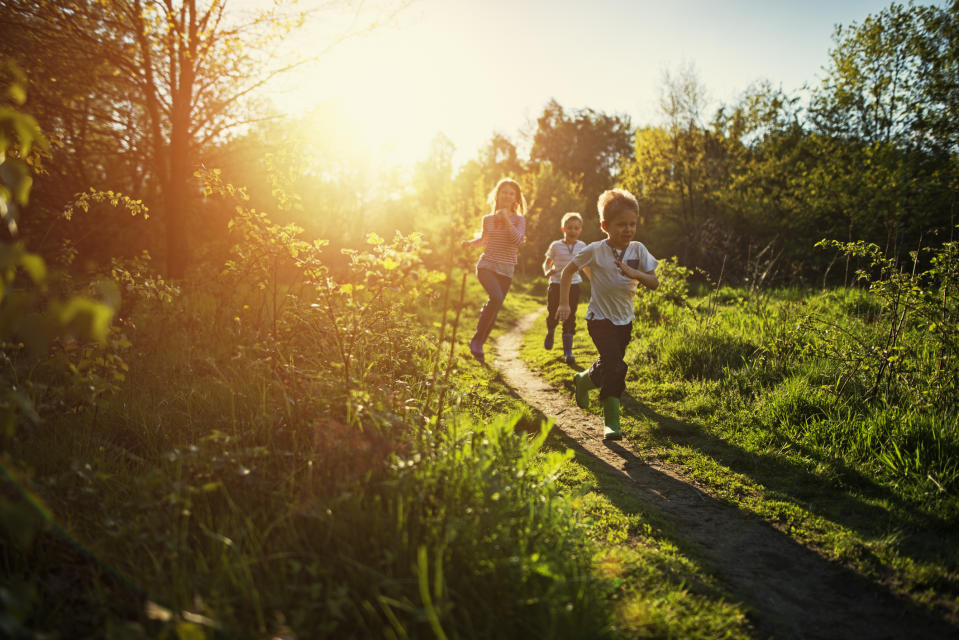 Families are being warned to be aware this summer while enjoying outdoor spaces. (Getty Images)