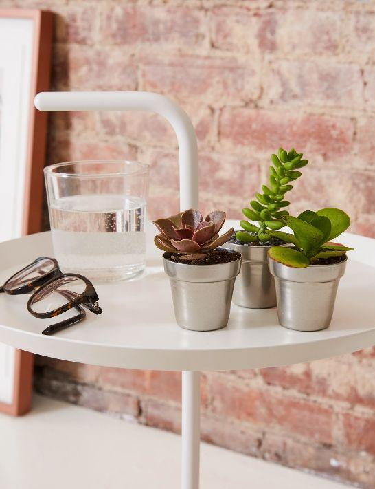 """Sometimes recycling is easier said than done. And if your friend is still feeling that way, <strong><a href=""""https://fave.co/2NECVmx"""" target=""""_blank"""" rel=""""noopener noreferrer"""">this assortment of succulents</a></strong> from <strong><a href=""""https://www.huffpost.com/entry/the-sill-faux-plant-collection-review_l_5d9b6b0be4b0fc935ede6ad0"""">The Sill</a></strong> will cheer them up and brighten any barren windowsill, countertop or desk. Because at the end of the day, a green plant is adding something to the planet too. <strong><a href=""""https://fave.co/2NECVmx"""" target=""""_blank"""" rel=""""noopener noreferrer"""">Get this assortment of succulents from The Sill</a></strong>."""