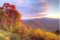 """<p><strong>Where to go:</strong> See scarlet, maroon, and golden bronze hues carpet the Shenandoah Valley. There's always the popular Skyline Drive in national park, or head over to the George Washington and Jefferson National Forests on the West Virginia border. </p><p><strong>When to go:</strong> <a href=""""https://www.nps.gov/shen/planyourvisit/fall-color.htm"""" rel=""""nofollow noopener"""" target=""""_blank"""" data-ylk=""""slk:Early November"""" class=""""link rapid-noclick-resp"""">Early November</a></p><p><a class=""""link rapid-noclick-resp"""" href=""""https://go.redirectingat.com?id=74968X1596630&url=https%3A%2F%2Fwww.tripadvisor.com%2FHotels-g3635782-Shenandoah_Valley_Virginia-Hotels.html&sref=https%3A%2F%2Fwww.redbookmag.com%2Flife%2Fg34045856%2Ffall-colors%2F"""" rel=""""nofollow noopener"""" target=""""_blank"""" data-ylk=""""slk:FIND A HOTEL"""">FIND A HOTEL</a></p>"""