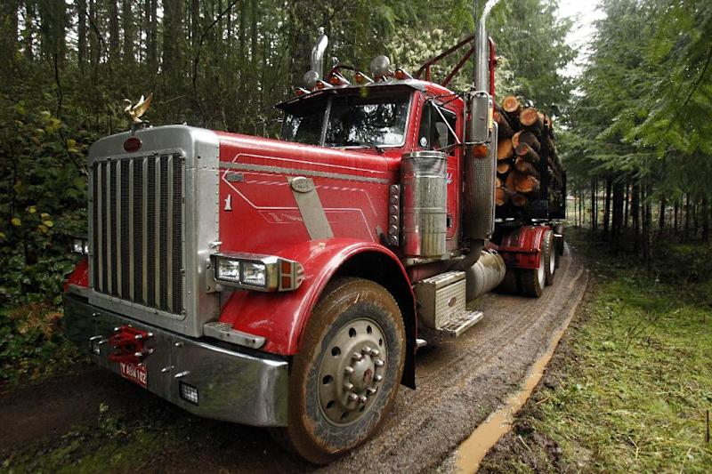 "FILE - In this Nov. 30, 2012, file photo, a loaded logging truck heads down the road in the forest near Banks, Ore. While the looming fiscal cliff dominates political conversation in Washington, some Republicans and business groups see signs of a ""regulatory cliff"" they say could be just as damaging to the economy. In recent weeks, the Environmental Protection Agency has proposed rules to scale back mercury emission limits for new power plants and deal with runoff from logging roads. (AP Photo/Don Ryan, File)"