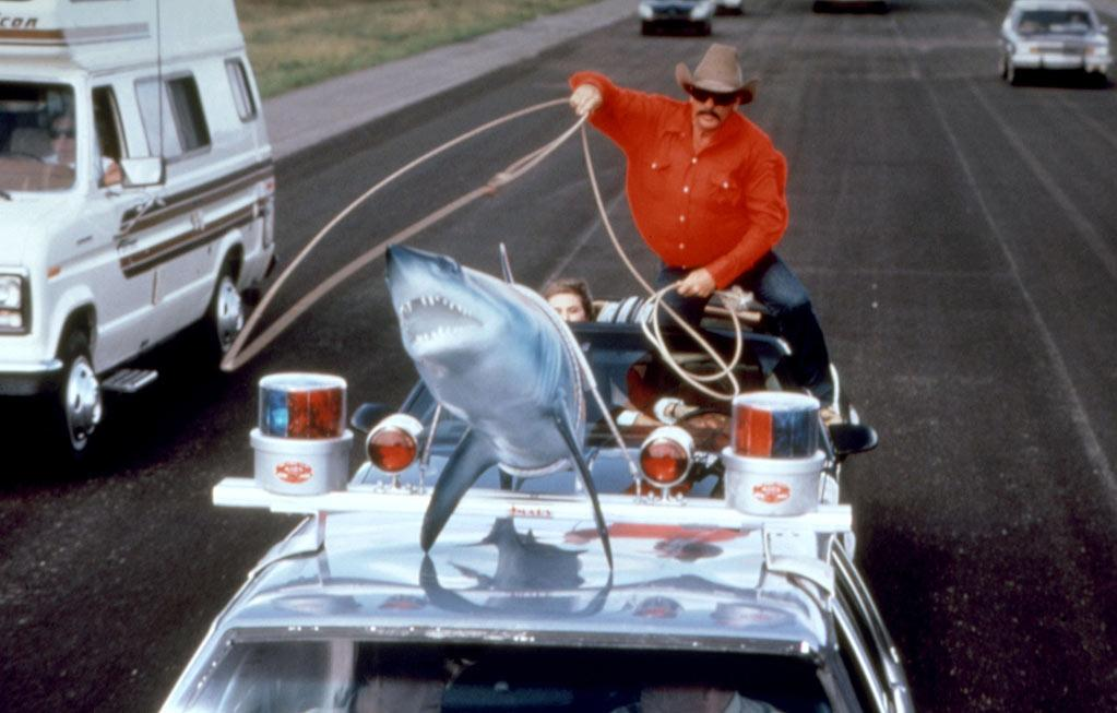 """<a href=""http://movies.yahoo.com/movie/smokey-and-the-bandit-pt-3/"">Smokey and the Bandit Part 3</a>"" (1983)<br>In order to get their seafood restaurant's prize center piece, brothers Big Enos and Little Enos hire Cletus (Jerry Reed) to haul an imitation ""Jaws"" shark across the country. Except for a bit cameo at the end, this critic's darling couldn't even lure Burt Reynolds to come back and play the bandit, though Jackie Gleason apparently needed the money badly enough to return as lawman Buford T. Justice.<br>"
