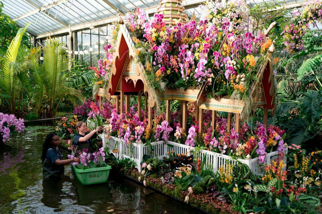 """<p>Can't hold out for spring to visit your first garden show? In February, The Royal Botanic Gardens at Kew hold an annual orchid festival – and it's a wonderful display. </p><p>For 2020, the theme is Indonesia to celebrate Kew's vital science work in the country. In the immersive glasshouse you'll encounter an erupting volcano created from orchids and other tropical flowers, as well as after-hours events featuring Indonesian music, dance and cuisine, and a series of talks from Kew's orchid experts. <br></p><p><strong>Kew Orchid Festival (8 February - 8 March 2020)</strong></p><p><strong></strong>Ticket included in entry price, starting from £16.50</p><p><a class=""""body-btn-link"""" href=""""https://go.redirectingat.com?id=127X1599956&url=https%3A%2F%2Fwww.seetickets.com%2Ftour%2Fkew-gardens&sref=https%3A%2F%2Fwww.housebeautiful.com%2Fuk%2Fgarden%2Fg30414433%2Fgarden-show%2F"""" target=""""_blank"""">BUY NOW</a><br></p>"""